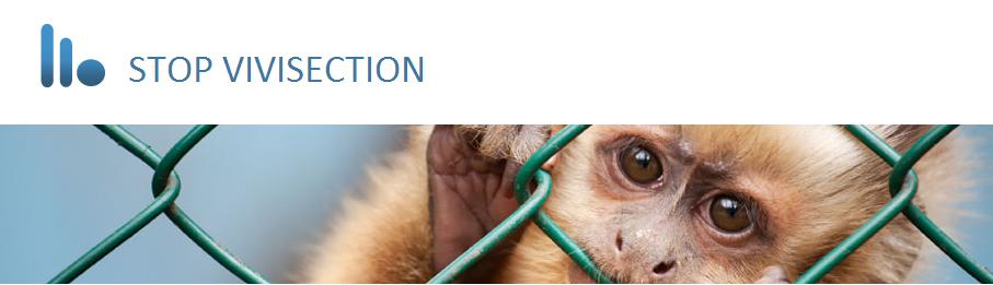 Pour la fin des tests sur les animaux enEurope
